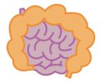 腸イメージ